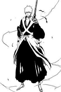 Ichigo's New 2 Zanpakuto Form Look