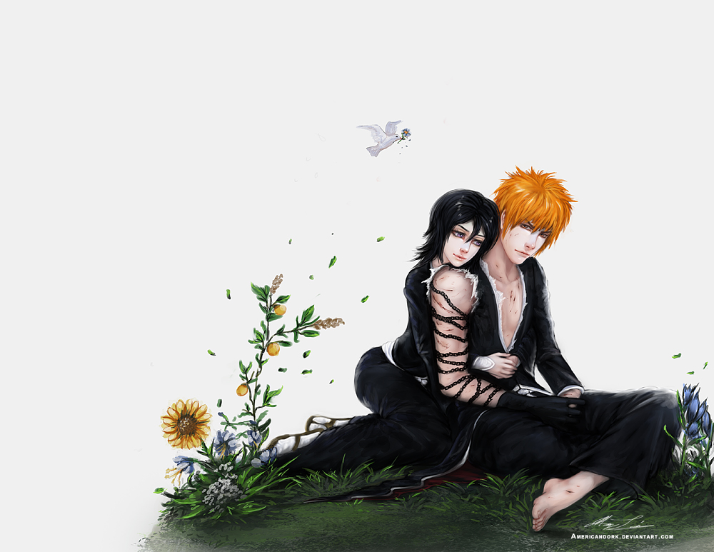Bleach Ichigo and Rukia by americandork