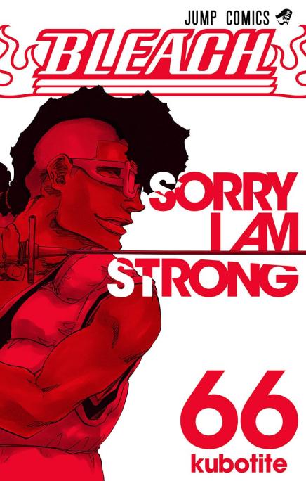 Bleach Manga on Break due toIllness
