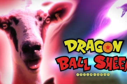 Dragon Ball Sheep (Video)