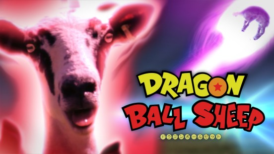 Dragon Ball Sheep