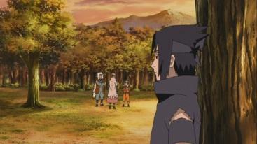 Sasuke looks upon Naruto and others