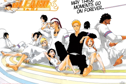 Thank You and Goodbye to Bleach