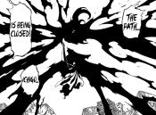 Ichigo defeats Yhwach