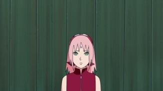 sakura-new-look