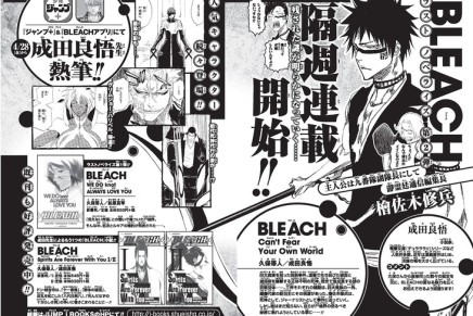 Bleach: Can't Fear Your Own World Novel Prepares For Release
